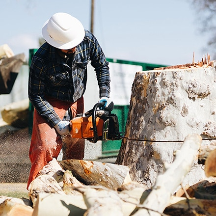 stump removal in richland wa