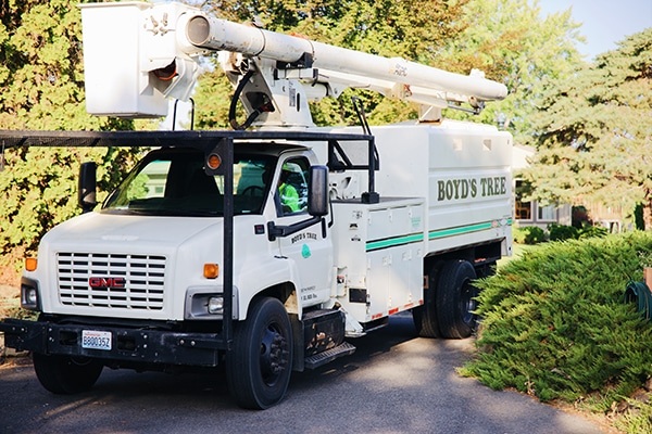 boyds tree service truck