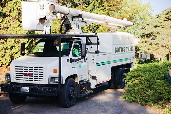boyds tree service truck