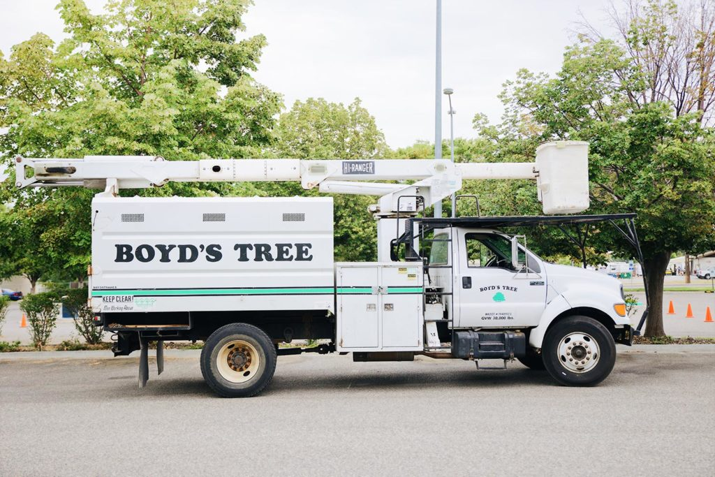 boyd's tree service kennewick